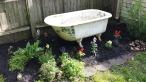 Another project in the making. this old claw foot tub used to be our herb garden. Instead, we've decided to clean it up and turn it into a fountain. Still working on that.